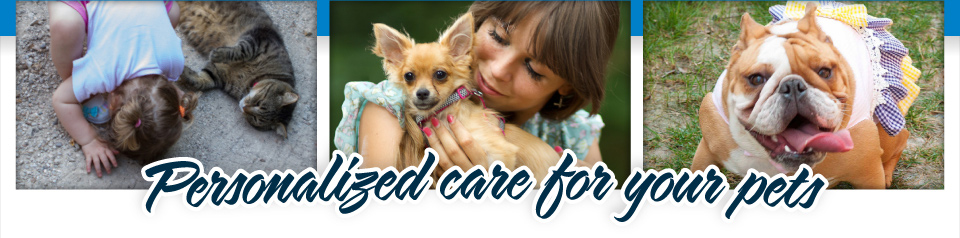 Personalized care for your pets | Adorable Pets