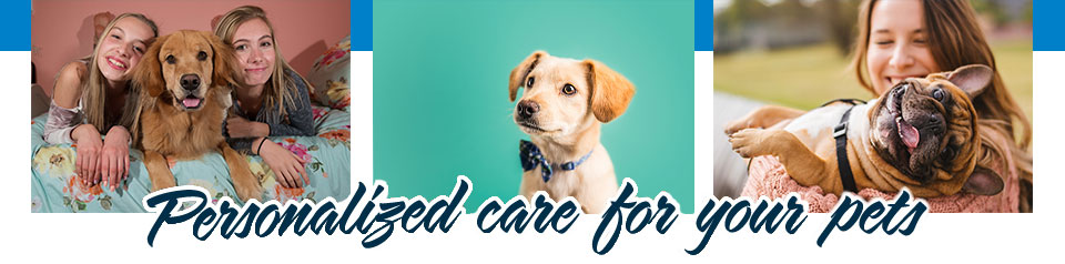 Personalized care for your pets | Family Pets